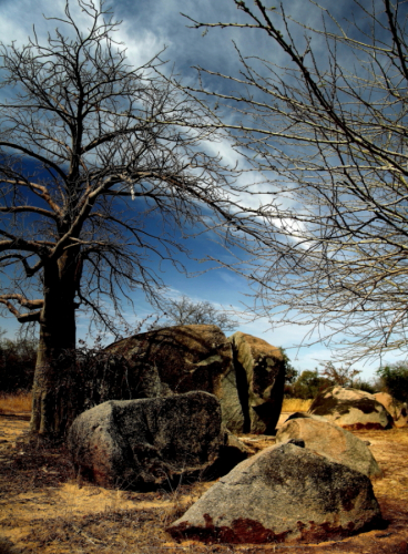 Burkina Faso - Going East - On the road to W National Park 001