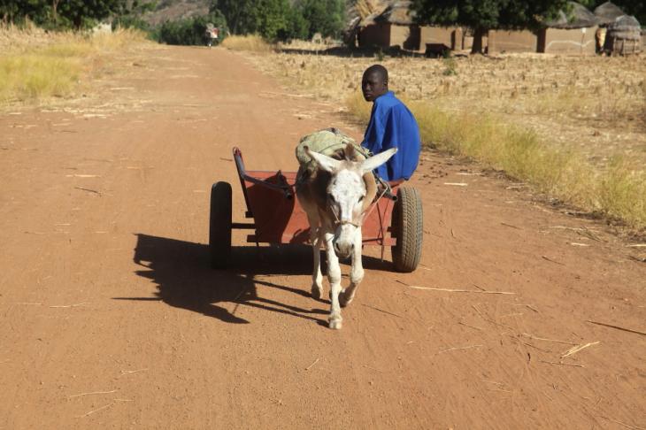Burkina Faso - Falaise du Gobnangou 001