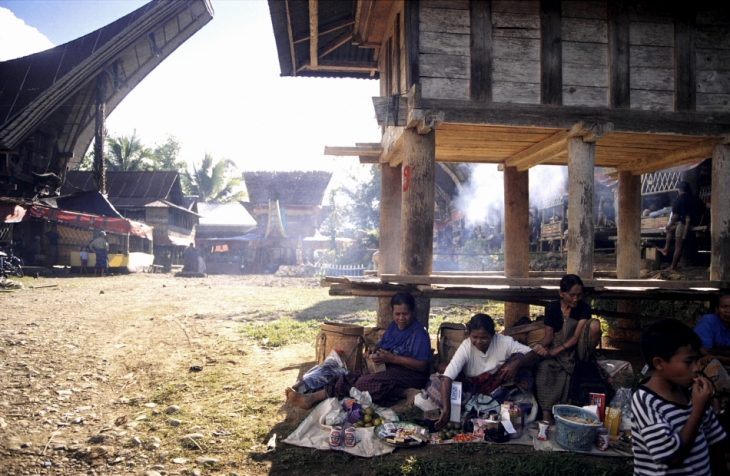 Indonesia - Sulawesi - Tanatoraja 001