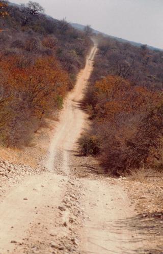 South Africa - Kruger NP 001