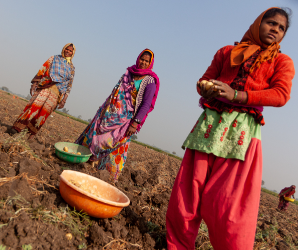 India - Madhya Pradesh -  On the road 002