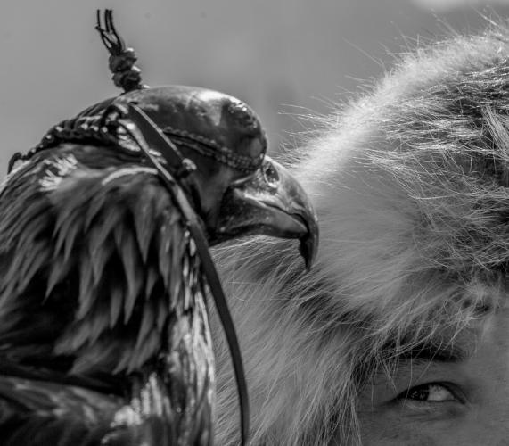 Kazakhstan - Bird training 003