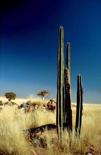 Namibia - Duwisib 003
