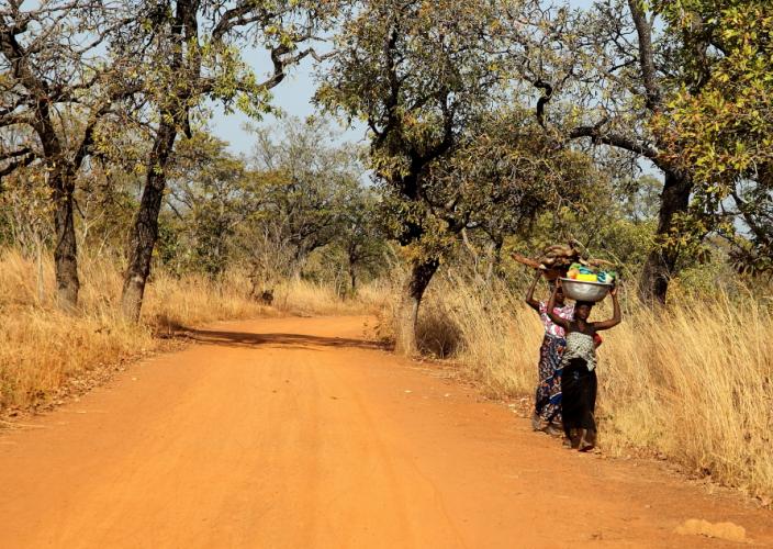 Burkina Faso 004 - On the road