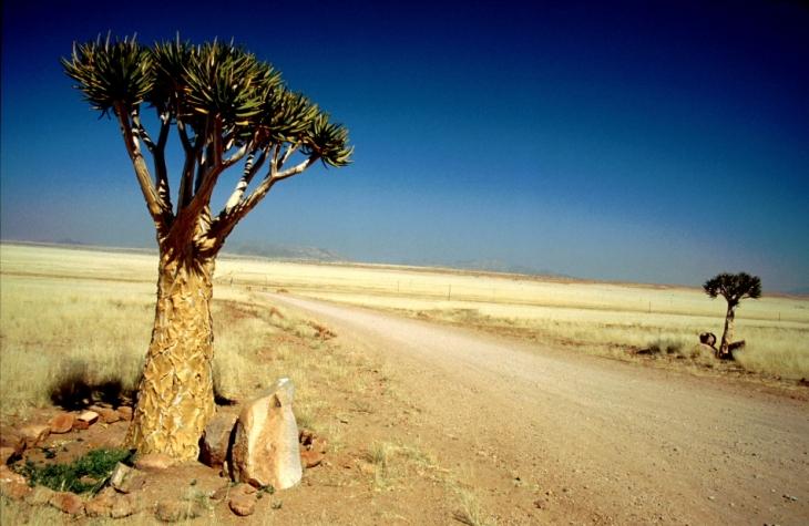 Namibia - Duwisib 004
