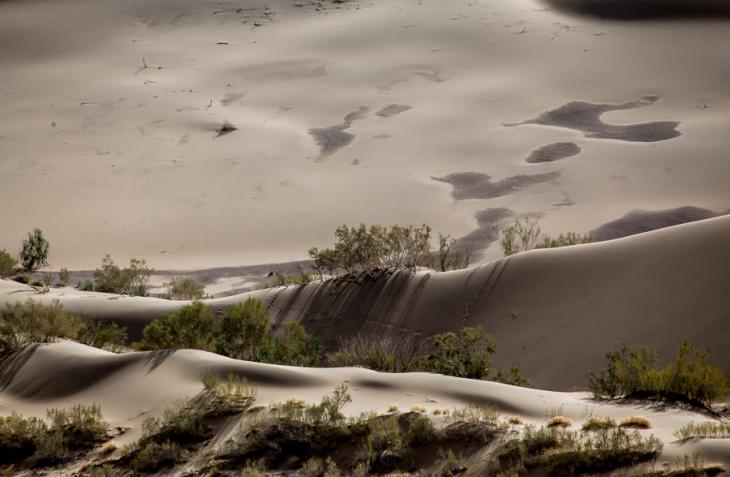 Kazakhstan - Altyn Emel 005 - Singing dunes
