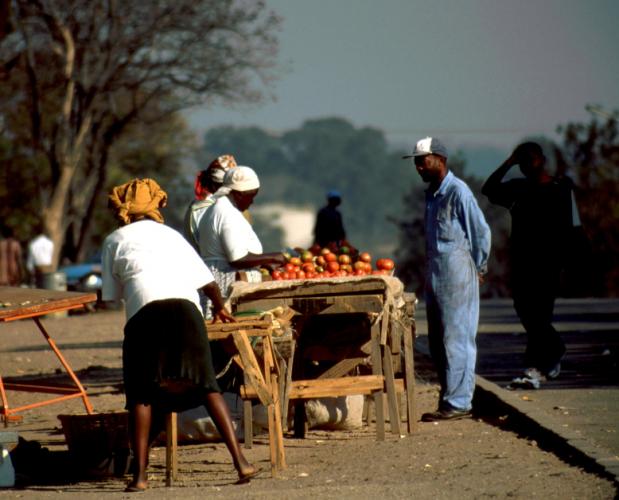 Zimbabwe 006 - Masvingo
