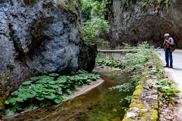 Bulgaria - Shiroka Laka 007 - On the road - Yagodina