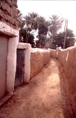 Libya - Ghadames 007