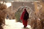 Mauritania - Tanichert oasis 007