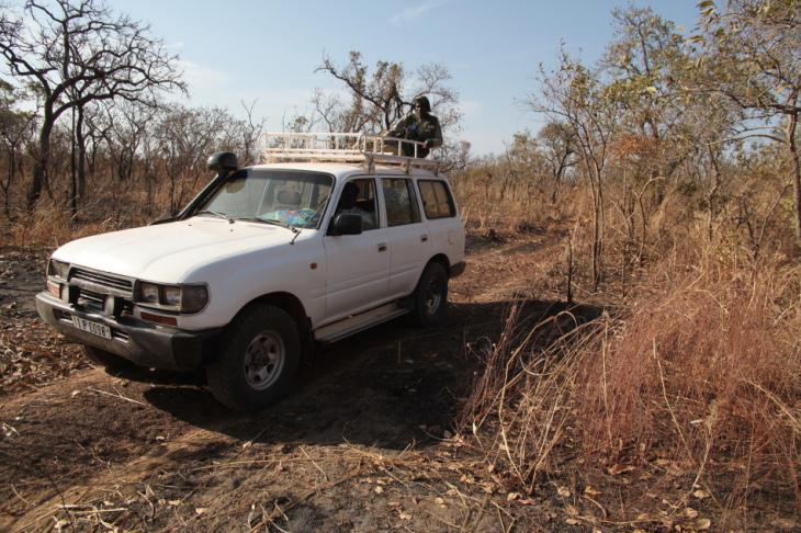 Burkina Faso - National Parks W & Arly 008