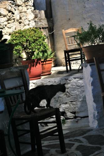Greece - Amorgos - Hora 009