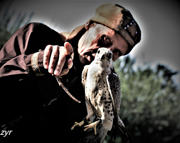 Kazakhstan - Bird training 009
