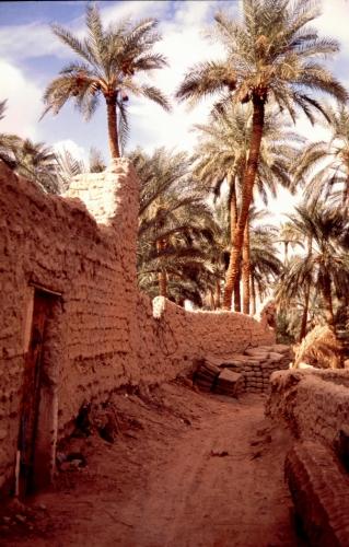 Libya - Ghadames 010