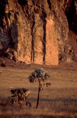 Madagascar - Isalo 010