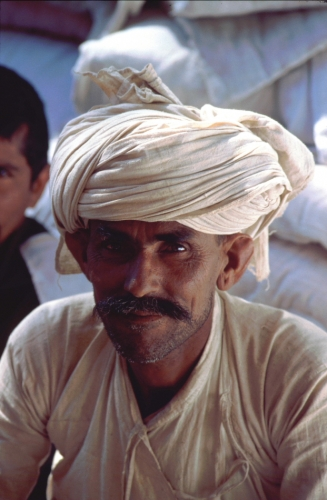 India - Mont Abu 13