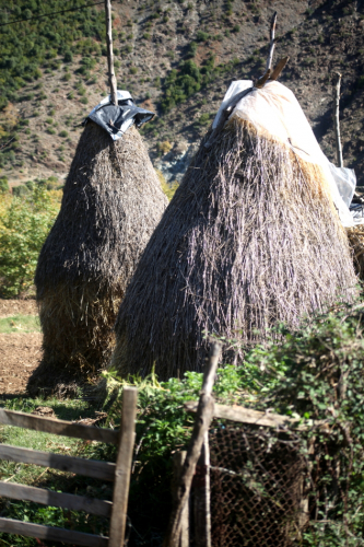 Albania 012 - On the road to Ohrid lake