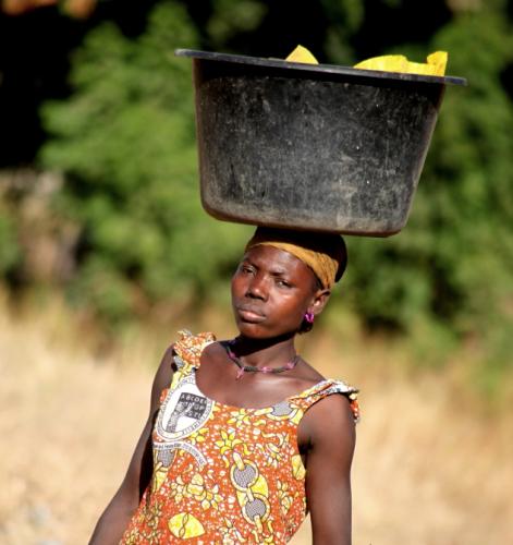 Burkina Faso - Falaise du Gobnangou 012