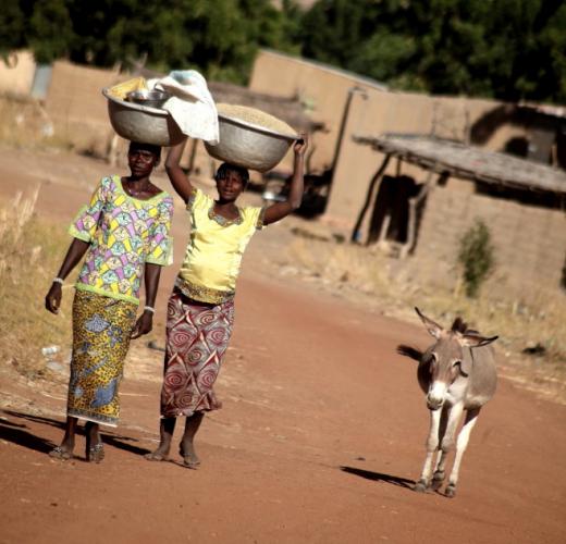 Burkina Faso - Falaise du Gobnangou 013