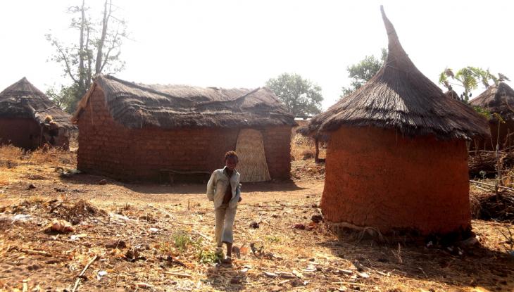 Burkina Faso 015 - Gan's village