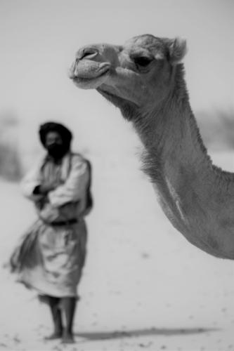 Mauritania 089 - Tanichert