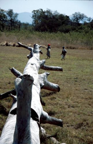 Zimbabwe 020 - Great Zimbabwe