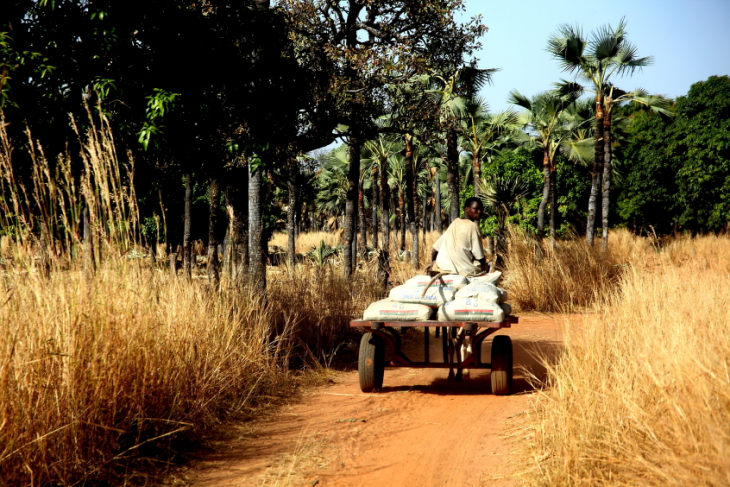 Burkina Faso 020 - On the road