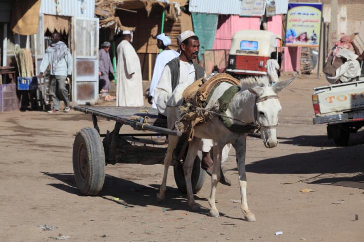 Sudan 022 - Kerma