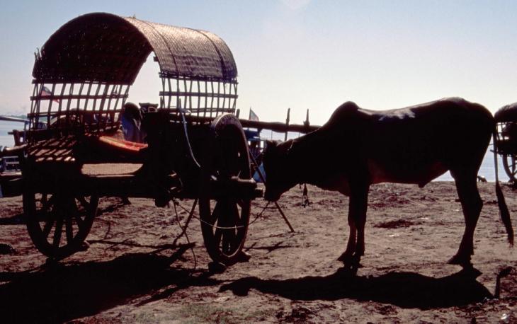 Myanmar - Mandalay 024 - Mingun