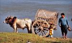 Myanmar - Mandalay 025 - Mingun