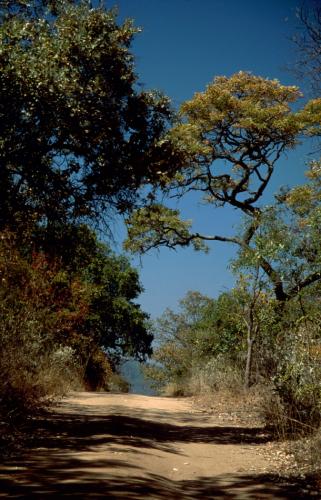 Zimbabwe - Cyrene Mission 025, on the road