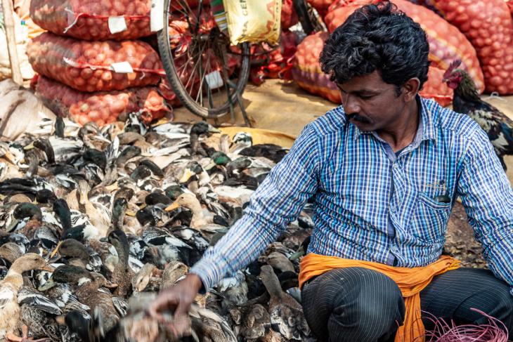 India - Odisha 028 - Tribal market on the way to Rayagada