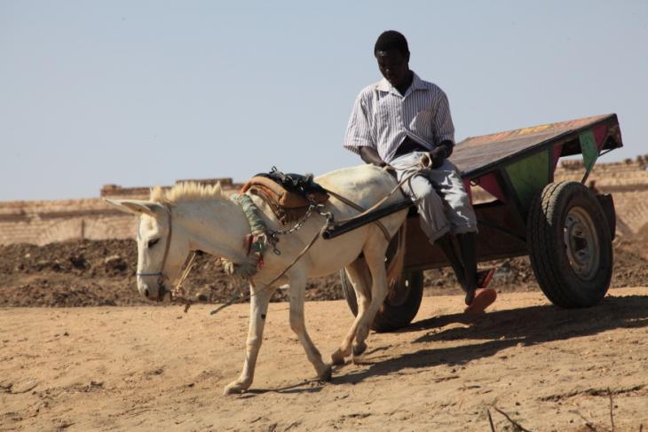 Sudan 029 - Karima