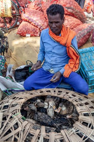 India - Odisha 029 - Tribal market on the way to Rayagada