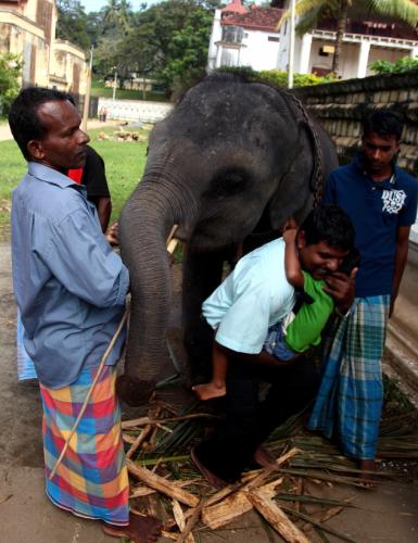 Sri Lanka - Kandy 030