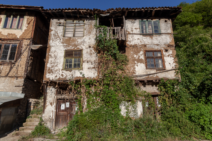 Bulgaria - Pirin 007