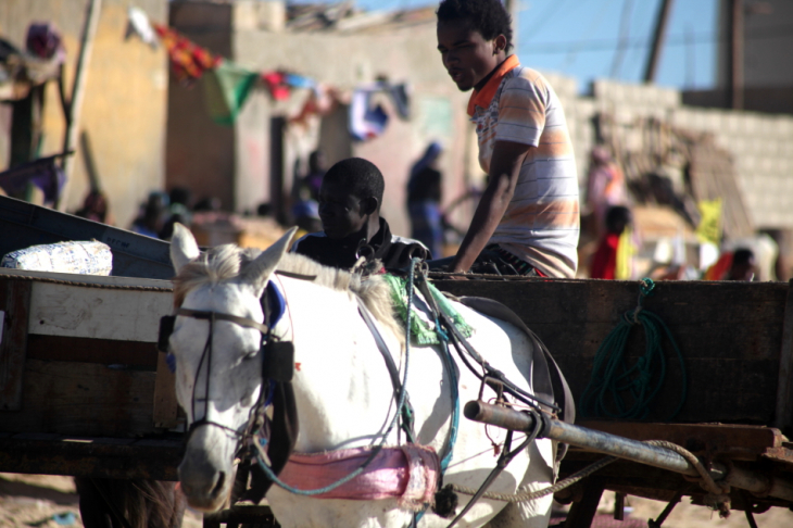 Senegal - Saint Louis 032