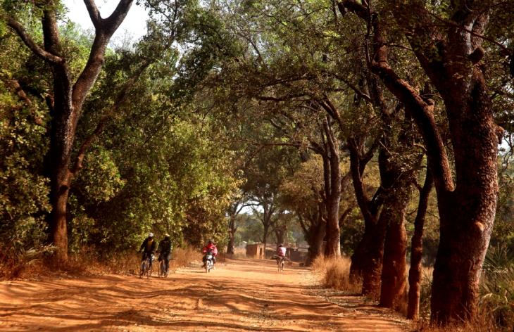 Burkina Faso 032 - On the road