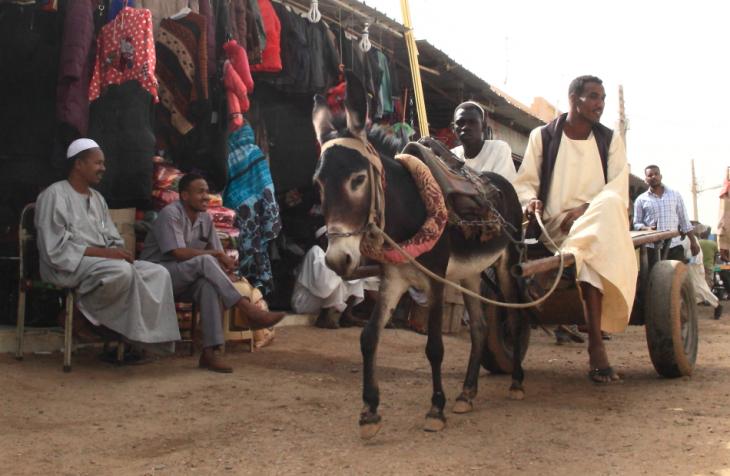 Sudan 033 - Dongola town