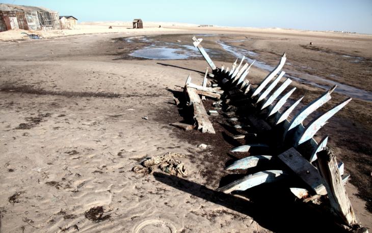 Mauritania 034 - Banc d' Arguin - Cap Iwik
