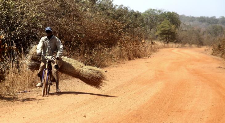 Burkina Faso 036 - On the road