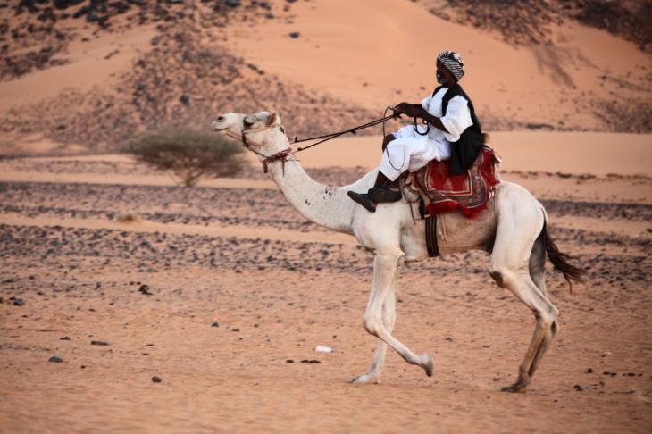 Sudan 039 - Meroe