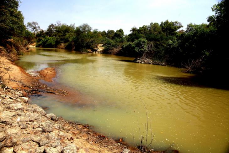 Burkina Faso - National Parks W & Arly 040