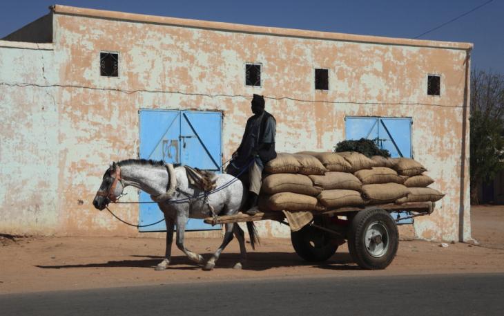 Sudan 041 - Karima