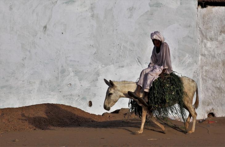 Sudan 041 - Tumbus