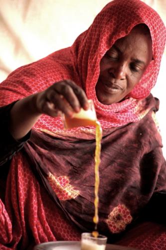 Mauritania - Tanichert oasis 044