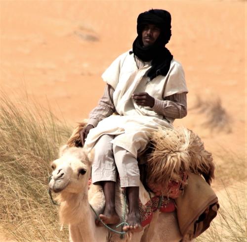 Mauritania - Tanichert oasis 047