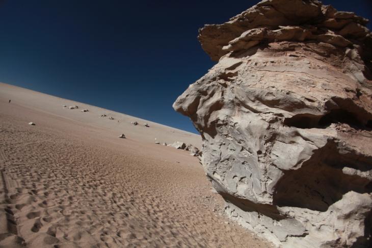 Bolivia - Itinerary Sur Lipez-Tupiza 048 / Desierto de Siloli
