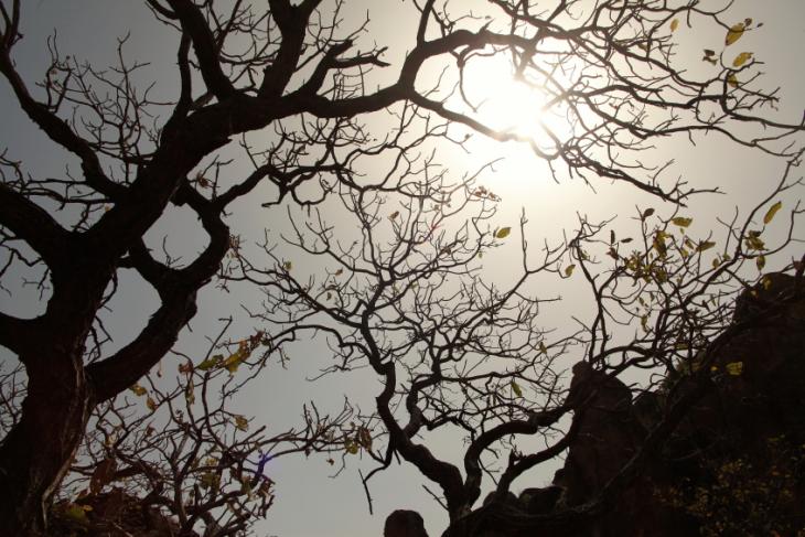 Burkina Faso 049 - Pics de Sindou