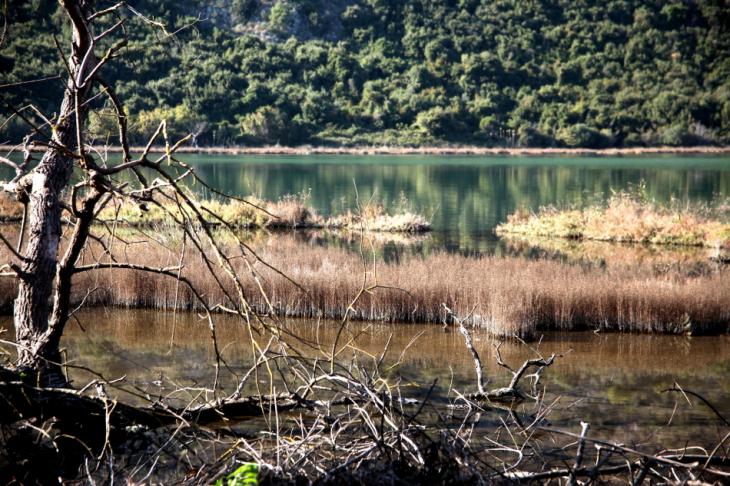 Albania 051 - Ionian Coast - Butrint